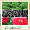 fyf fertilizer/agriculture fertilizer price humic acid