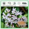 Free Sample Valerienic Root Extract Powder Valerienic Acid 0.8%