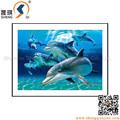 güzel deniz dünya 3d hayvan resimleri