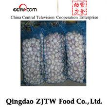loose packing mesh bag perfect natural garlic price per ton