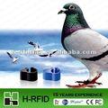 Rfid animales etiquetas anillo/y paloma's de pollo pies
