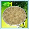 Best Selling Natural Angelica Sinensis Granules