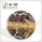 coriolus versicolor polysaccharide PSP30 extract powder