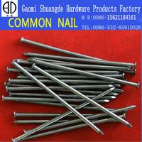 SD construction hot sell common nail
