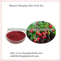 high quality 100% natural bilberry extract