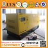High performance with cummins engine 200kw silent diesel generator 250kva