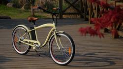 Cheap Beach Cruiser Mountain Electric Bike