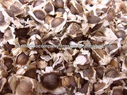 PKM1 Moringa Seeds For Medicinal Use