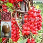 2%-9% Schisandrins Fructus Schisandrae Chinensis P.E.