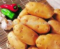 2014 new vegetables shandong fresh potato seed