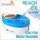 drinking water fountain pet