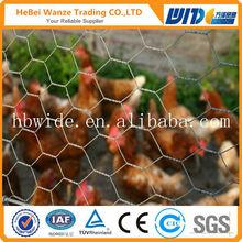 High quality cheap bird cage chicken wire mesh low price bird cage chicken wire mesh(china manufacturer)