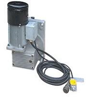 Hoisting motor