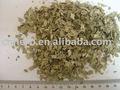 secas de alta qualidade de folhas de goiaba chá