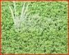 VIVATURF artificial grass for tennis court