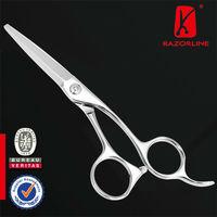 Razorline SK42 Japanese Stainless Steel Professional Sharpening Salon Beauty Hair Scissors