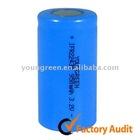 Dynamic Inverter Battery