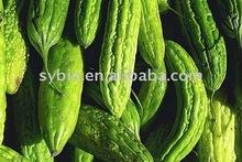 Biharatter Melon P.E.