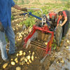 Hot sale potato harvester machine for farm use