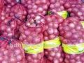 Embalagem sacos de malha para cebolas agrícola