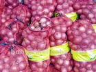 Agricultural Packing Mesh Bags for onions