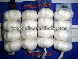Fresh pure and normal white garlic cheap price of 2013 China