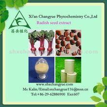 Raphanus sativus L. extract/ radish seed extract