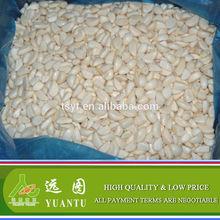 IQF garlic cloves