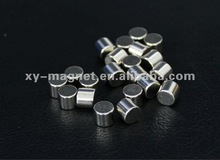 Durable service permanent magnet