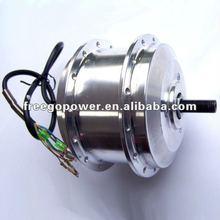 36 Brushless Electric hub motor car