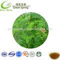 de alta calidad orgánica moringa oleifera hoja en polvo extracto de moringa beneficios