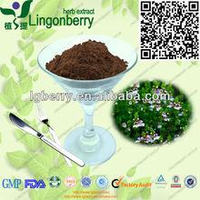 pure herbal extract eyebright powder