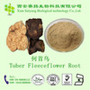 100% Natural Extract Tuber Fleeceflower Root Extract Price