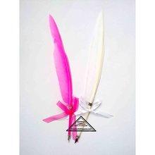 Goose feather fountain pen