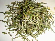 green tea brand names