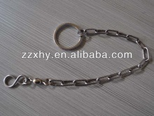 Durable Stainless Steel Parrot Chain for Cockatoo LZ03