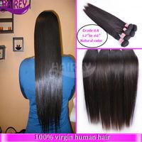 Wholesale free shipping 5a grade 100%brazilian human hair bulk hair bands bulk