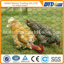 High quality chicken coop wire netting cheap chicken coop wire netting chicken coop wire netting(CHINA SUPPLIER)