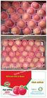 Fresh Yantai Fuji apple 2014 Fruit