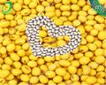100% de alta calidad de soja no gmo witn de alta calidad