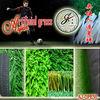 Grass artificial Grass for soccer-AAG