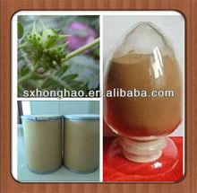 Top Quality Tribulus Terrestris 80% Saponins