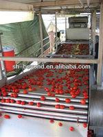 tomato paste processing line/produce tomato sacuce,juice, ketchup