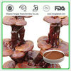 Top Quality Organic Reishi Mushroom Extract Powder