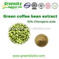Caffè verde estratto di fagiolo con il 50% acido clorogenico caffè verde estratto di fagiolo