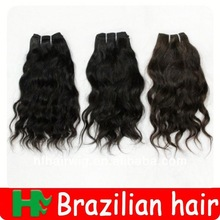 Virgin Brazilian Hair Lace Wig