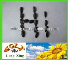 wholesale black oil sunflower seeds