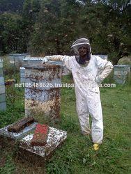 manuka honey active