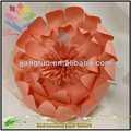 nueva llegada flor color de rosa etapa de nuevo producto