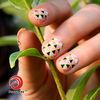 2014 newest beauty colorful nail art fruit sticker custom nail art sticker